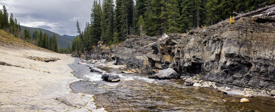 Fly Fishing Alberta Rocky Mountains